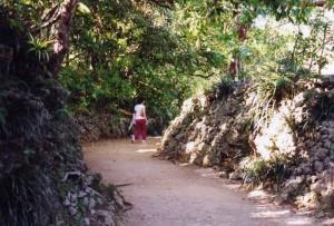 写真5/育徳泉につながる石畳の後に現れる、石垣に囲まれた切り通しの緩やかな湾曲路