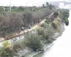 漫湖北岸にある漫湖公園。ジョギングコースとして市民に親しまれている/写真3