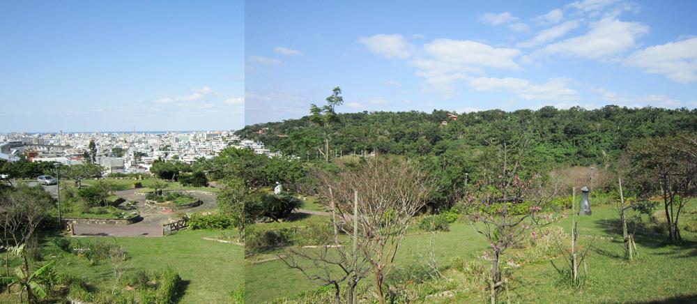 写真1/公園全景。自然が多く残り、深い緑が広がっている。起伏に富んだ地形で散歩も楽しい