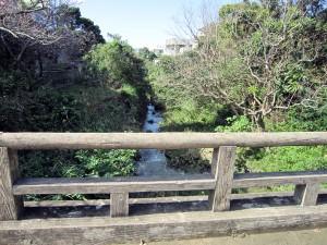 写真3/公園中央を流れる安謝川の中流域