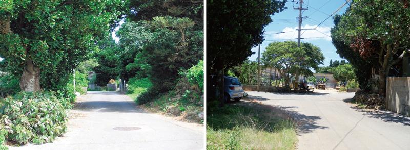 写真2/大きなフクギ群と蛇玉道 写真3/集落の要所に現れるY字路