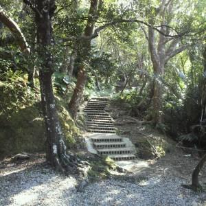 神殿や拝殿の右側にある神道。パワースポットとしても知られる