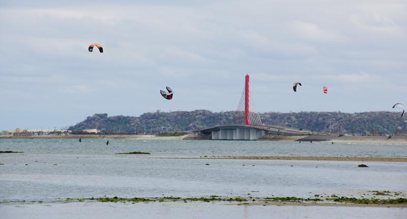 赤い斜張橋が架かる海中道路を背に、多くのカイトが空に舞う