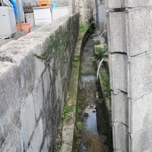 写真8.家と家に挟まれる川。一見すると、排水用の水路にしか見えない