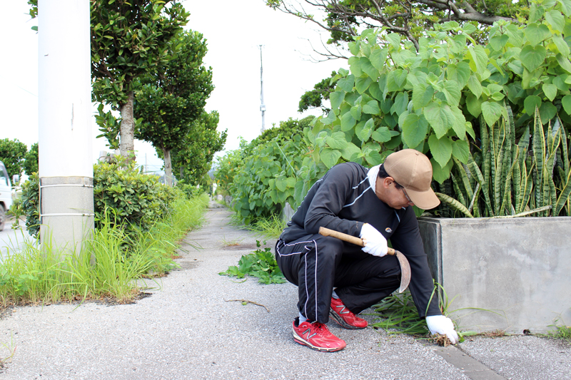 丁寧に草木を刈る・引っこ抜く。道路沿いも整え、人が通りやすいように。