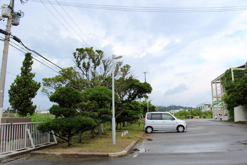 沖縄らしいスコールだったみたいね。。