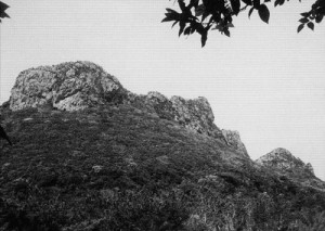 写真:創世神・アマミキョがつくったとされる「安須森(アシムイ-国頭村)」