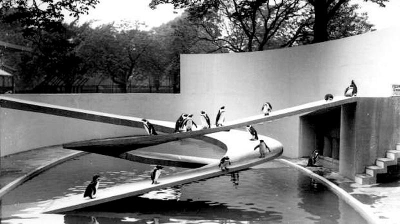 <写真1>1930年代に造られたロンドン動物園のペンギンプール。らせん状のスロープが交差する独特の構造。現在、ペンギンたちはLubetkin Penguin Poolではなく、イギリスで最大のペンギンプール「Penguin Beach」で飼育されている。© ZSL‐Lubetkin Penguin Pool copyright: ZSL © ZSL London Zoo