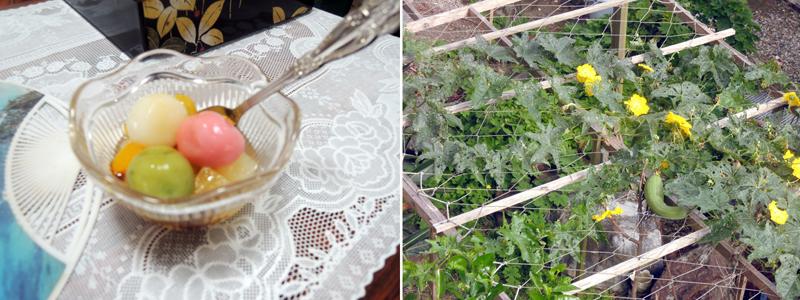 写真左/今年はウンケーで出てきた団子がカラフルでした。 写真右/今年の夏、近所で見つけたナーベーラー。花もかわいい