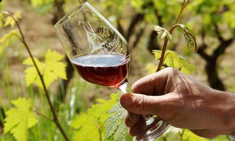 琉球ワイン紀行