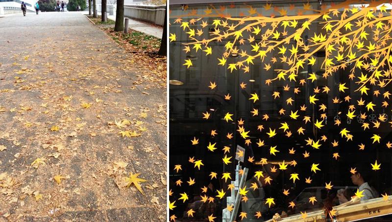 <写真左>イチョウの通り(東京のイチョウ並木を歩く) <写真右>モミジ柄のガラス窓(昨年の銀座木村屋のショーウィンドウ飾り)