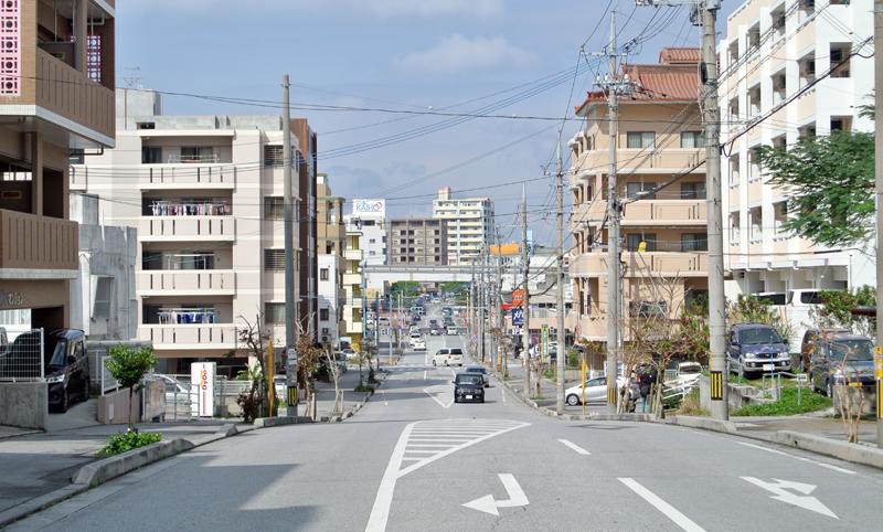 真嘉比エリアから新都心方面を見る。人気の高い真嘉比小周辺