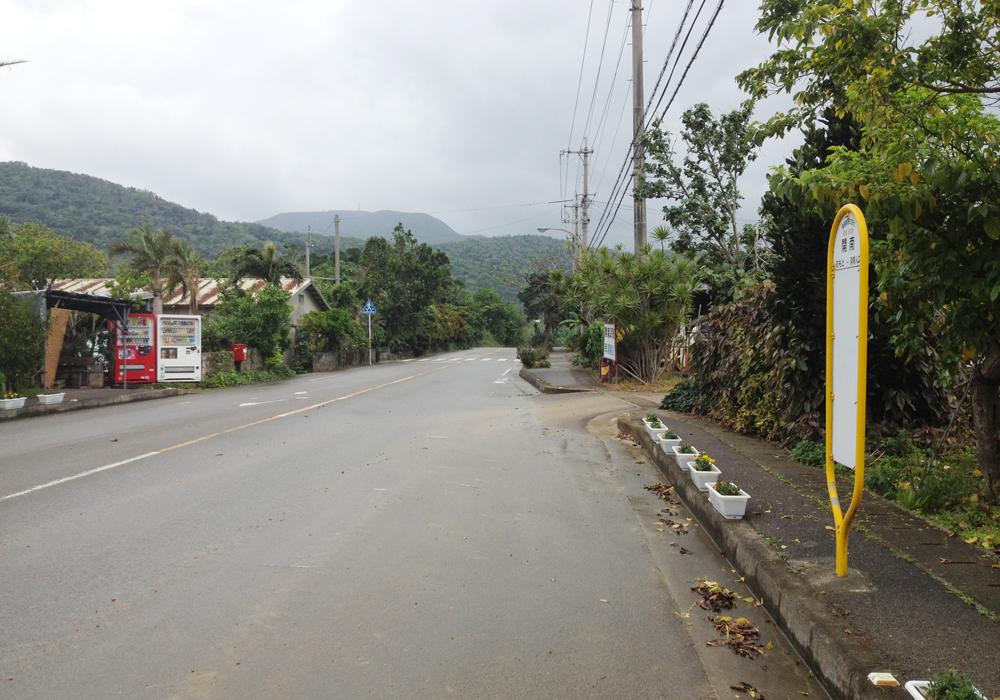 開南の集落とバス停。南の市街地から北部へ抜ける道沿いに、何軒かの家が並んでいる。雲が掛かっていて見えにくいが、正面奥の電波塔がある山が、沖縄県の最高峰である標高525.5メートルの於茂登岳