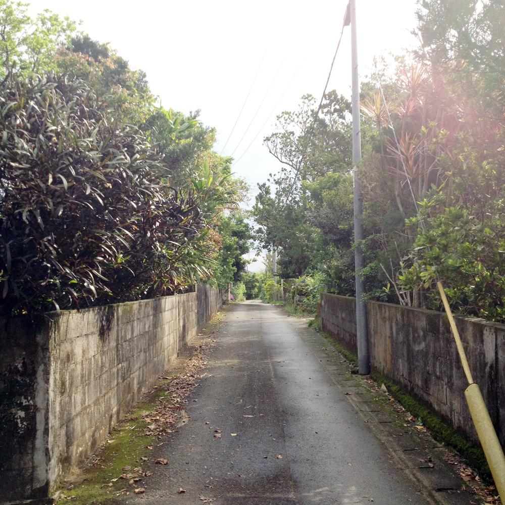 バスの走る道から一歩へ入ると、こちらも直線的な道が延びている。開南集落内も直線の道が交わり、四角形に区画されたいかにも開拓地という景観が見られる