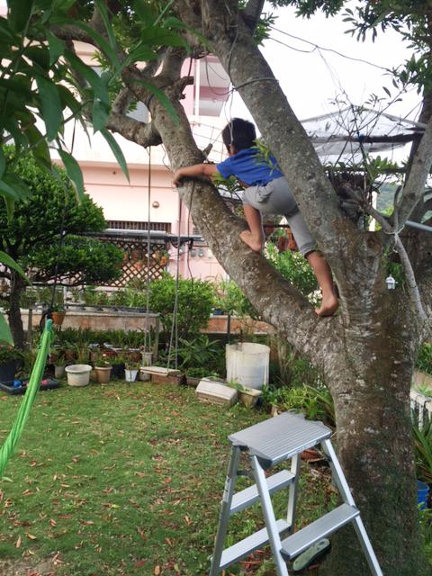 実家の庭で遊ぶ子どもたち