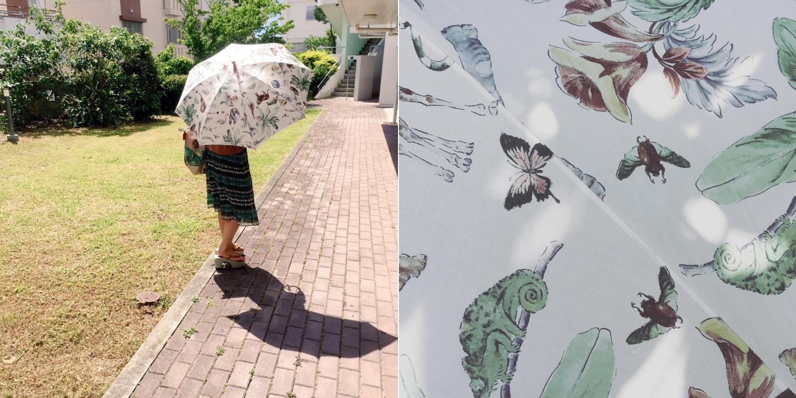 本村ひろみさんの日傘
