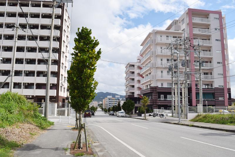 宇茂佐の森2丁目付近。新築や築浅のアパートがずらりと並ぶ。この通りは、建物が多い割に「貸」ののぼりは少なかった。中部興産の玉城さんによると「人気のエリアだから、すぐに埋まってしまう」とのこと。少し小さな道に入ると、空き物件のあるアパートが見受けられる
