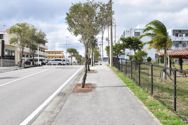 同地域は公園や街路樹がしっかり整備されており、「緑」とまちづくりが強く結びついているのが分かる。歩道も広めにとられていることから、散歩をしている人も見受けられた